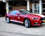 Car Style Tinttotaal Ford Mustang