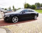 Ruiten Tinten Audi