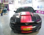 auto decals striping